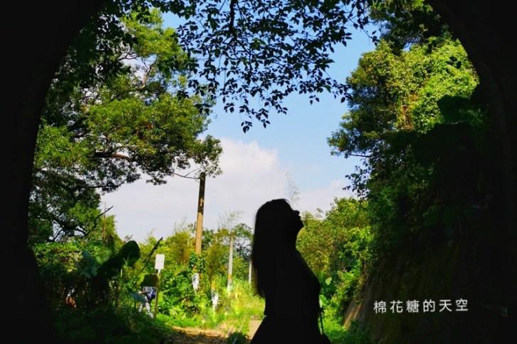 20191012204617 61 - 台中后里祕境大公開|神秘隧道美得像是宮崎駿卡通場景
