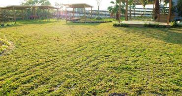 《台中景點》都市中的開心農場,休閒、農作、體驗都在阿一農場<上~農場導覽>