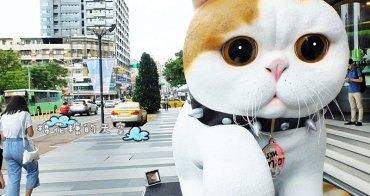 《台中活動》勤美門口出現萌萌貓兒!比人還高的貓兒等大家來合照唷!就在草悟道旁邊!