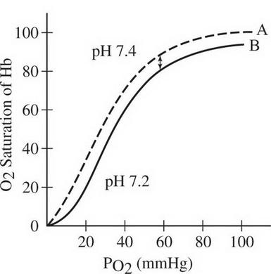 AP Biology Practice Test 16_crackap.com