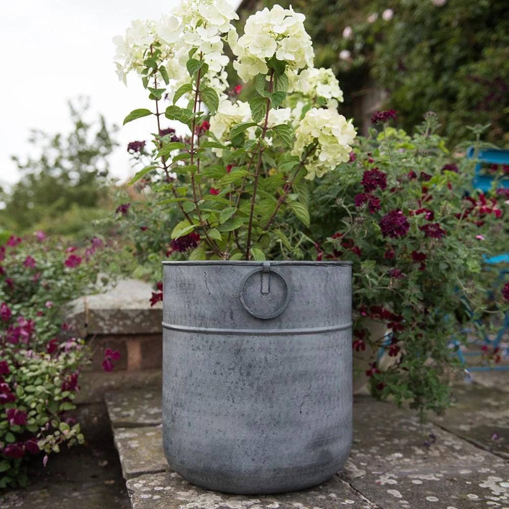 Metal Planter Delivery Waitrose Garden In
