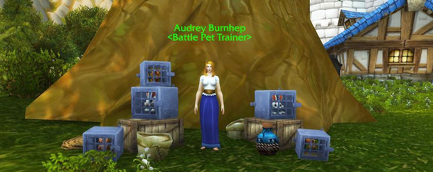 Audrey Burnhep Pet Battle Guide