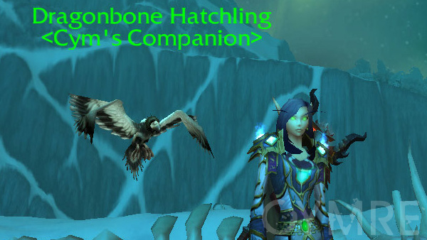 Dragonbone Hatchling
