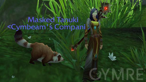 Masked Tanuki