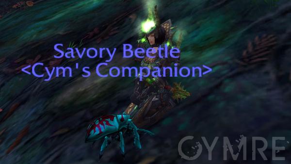 Savory Beetle