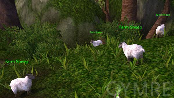Chee Chee - Farm sheep