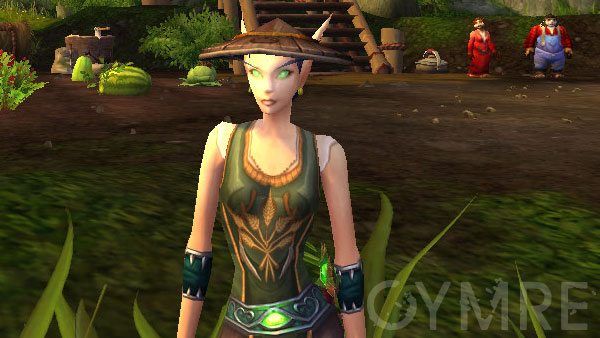 The Tillers tabard