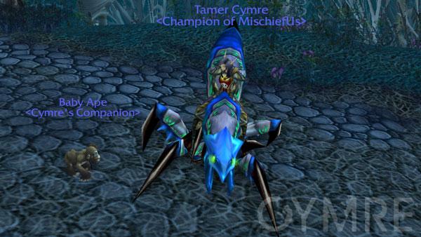 Tamer Cymre
