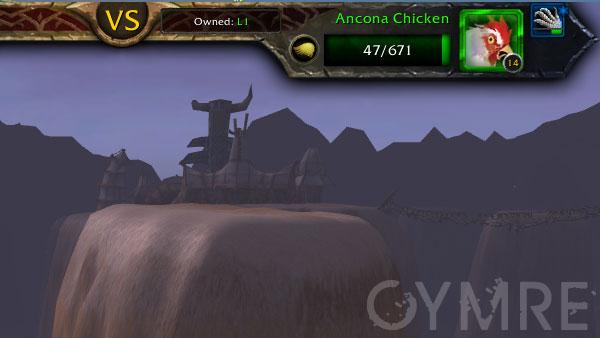 Ancona-Chicken