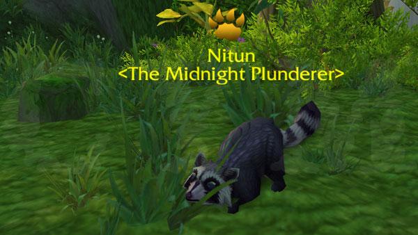 Nitun