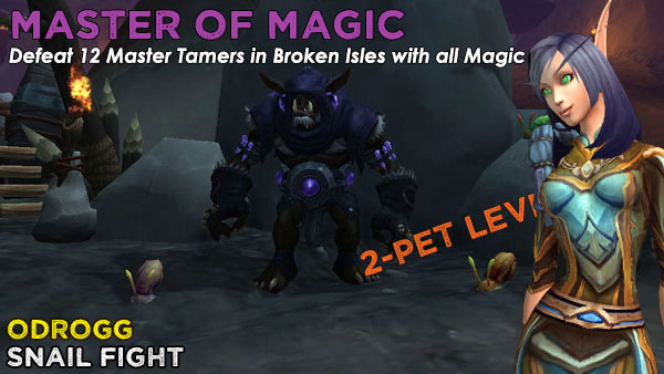 MagicOdrogg2 Power-Levelling on the Broken Isles