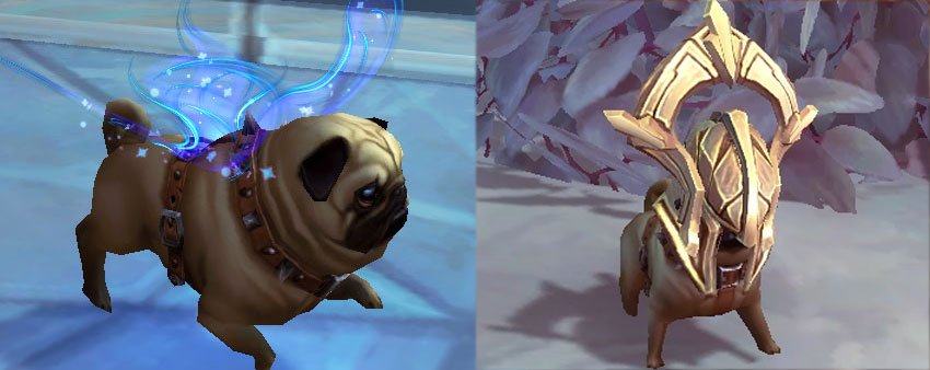 Pug Faerie Ascended costumes