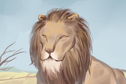 夢見獅子向我跑來但是沒有咬我什么意思 - 第一星座網