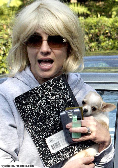 Crzy Britney