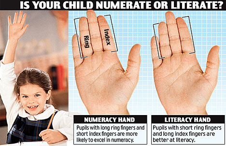 Your index finger - ring finger ratio provides a clue about your intellectual talent.