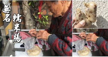 【台南美食】在地人的私藏美食!水仙宮旁的阿嬤牌無名糯米腸~