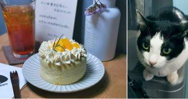 【台南甜點】神農街尾的文青咖啡館,內有萌貓快快進入:肥貓咖啡館