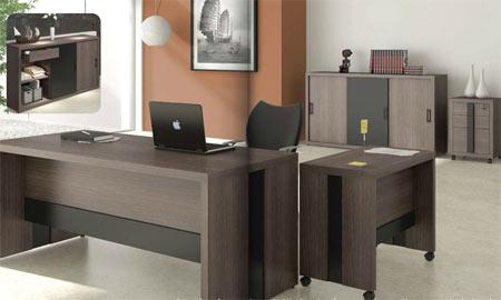 Diseos de escritorios ejecutivos  Oficina  Decora Ilumina