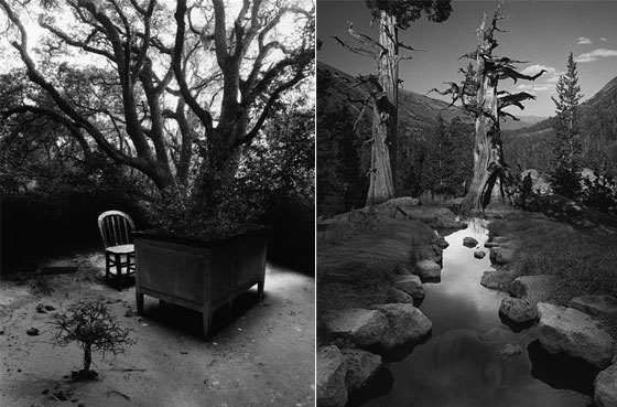 Stunning Surreal Photography by Jerry Uelsmann  Design Swan