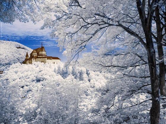 Beautiful Landscape Design