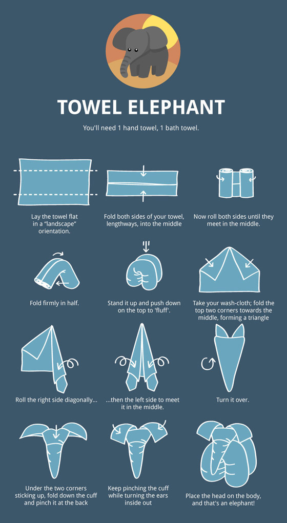 Towel Animal Folding Infographic Ultimate Guide to Create