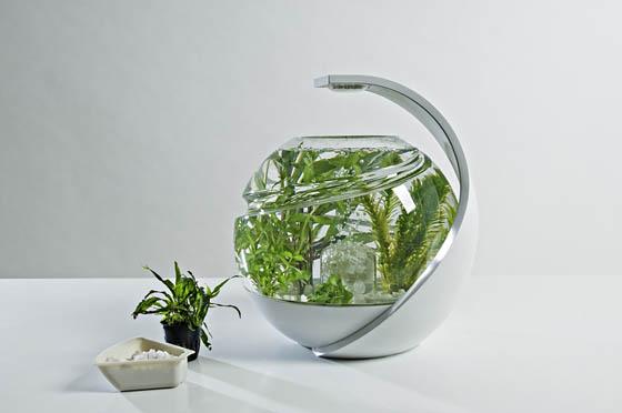 Avo: Innovative Self-cleaning Fish Tank – Design Swan