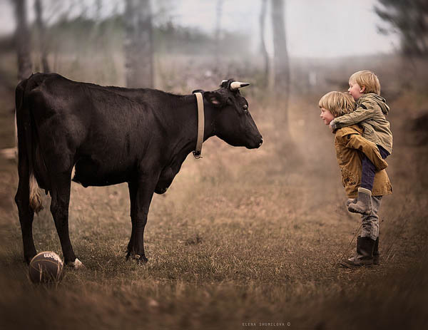 Alien Wallpaper Cute Heartwarming Photograph Of Kids And Farm Animals Design Swan