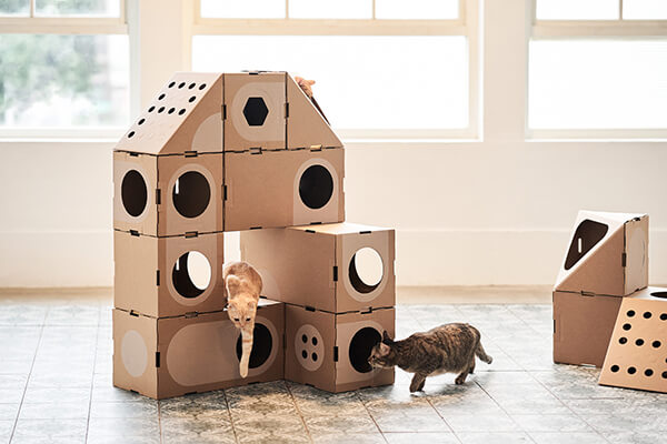 Modular Cardboard Cat Box Furniture  Design Swan