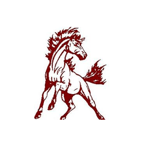 Shenandoah Mustangs   2020 Football Boys   Digital Scout live ...