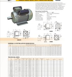 yl series single phase two value capactior motors 1 1 pages [ 1000 x 1373 Pixel ]