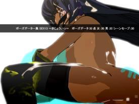 ポーズデーター集 SEX13 ~ きじょういっ ~