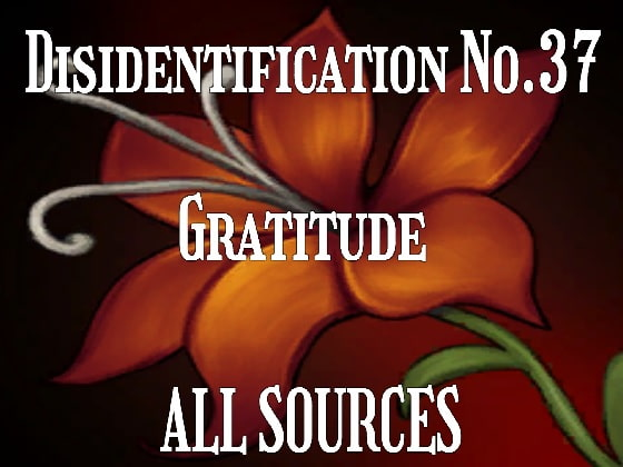 [All Sources] Disidentification_No.37_Gratitude