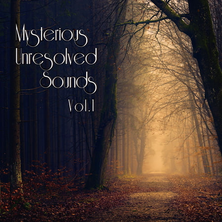 Mysterious Unresolved Sounds Vol.1