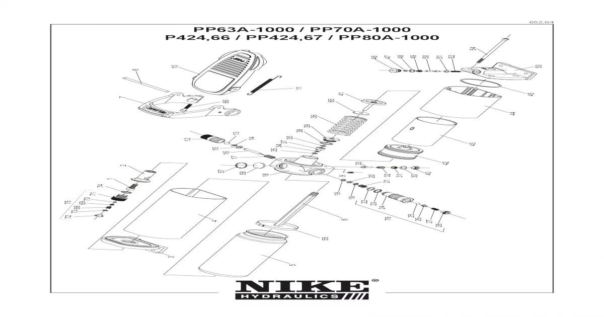 Manual Bomba Nike 65204