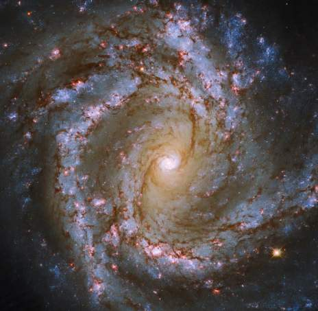 Hubble captures a spectacular face-on Starburst galaxy
