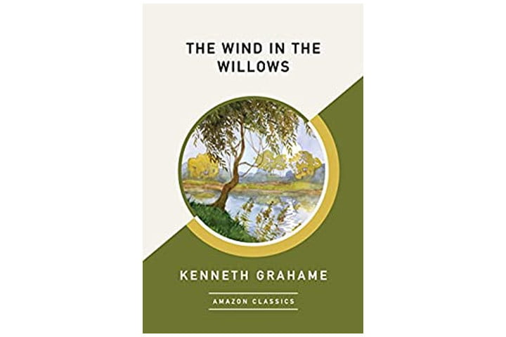 Photo shows the book cover which is split diagonally in half - the top half is cream, the bottom half an olive green. In the middle there is a circle with a picture of a lake and a willow tree. The book title is in black font on the top (beige) half, while the author's name is in a light cream font on the bottom (olive green) half.