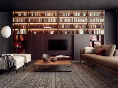bookcases with built in lights