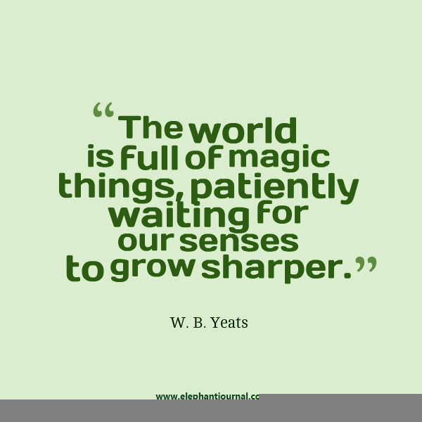wb yeats ej quote