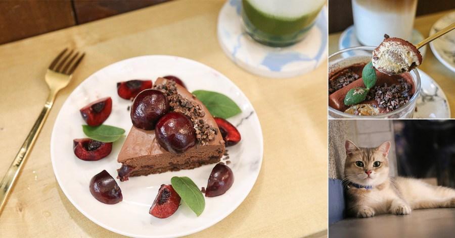 台南 新美街咖啡甜點下午茶小店,超萌毛小孩店貓店狗駐店 台南市中西區|镹coffee.dessert