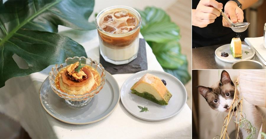 台南 赤嵌樓周邊清新的咖啡甜點店,店裡還有激萌親人店貓「蚵仔煎」駐店 台南市中西區|ATEM Coffee