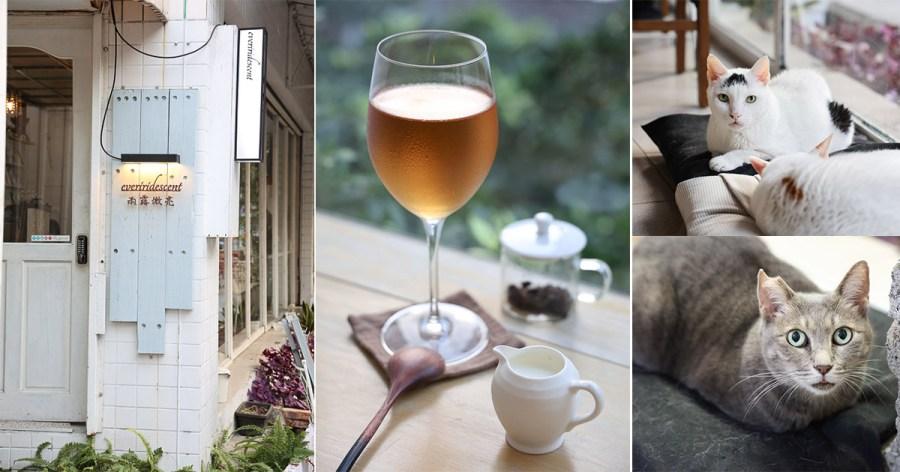 台南 悠閒品嘗各國茶莊好茶的一間茶屋,台南火車站附近下午茶或是摸貓的好去處 台南市北區|雨露微亮