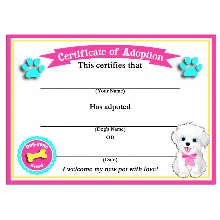 Nice Adoption Certificate Templates Images Gallery Brilliant