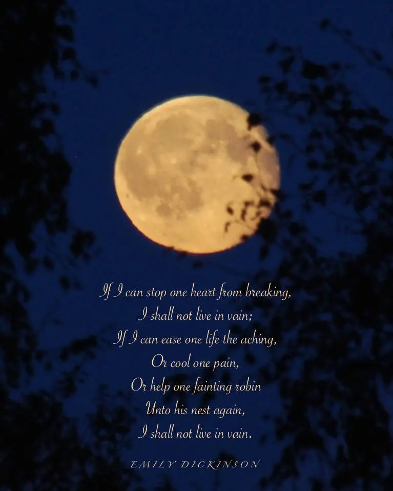 Emily Dickinson Poem Full Moon Photograph With Quotation