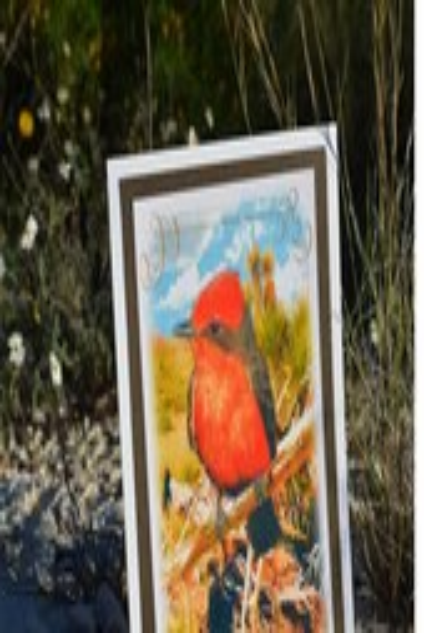 Red Bird Greeting Card, D...