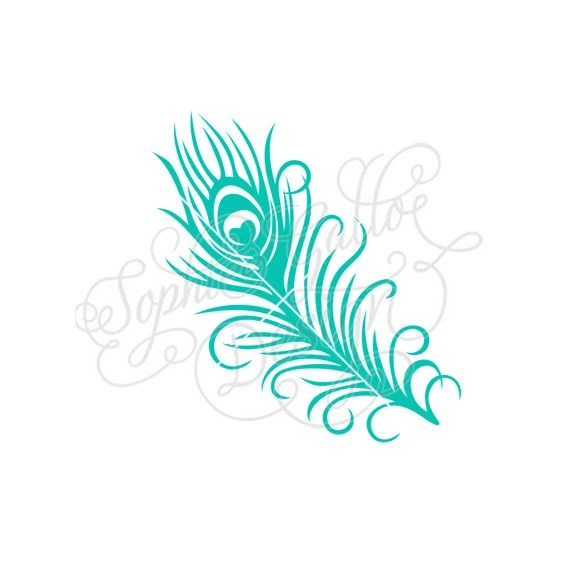 Turquoise Feather Border