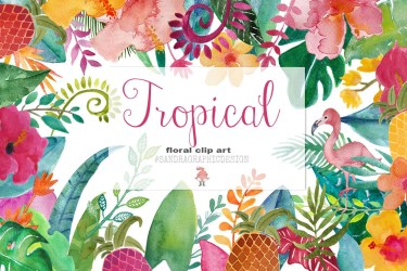 tropical clip flowers flower watercolor clipart floral summer frames colorful painting leaves painted hand creativemarket hawaiian bouquets graphics bloemen tropische