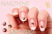 lady bugs nail decal bird