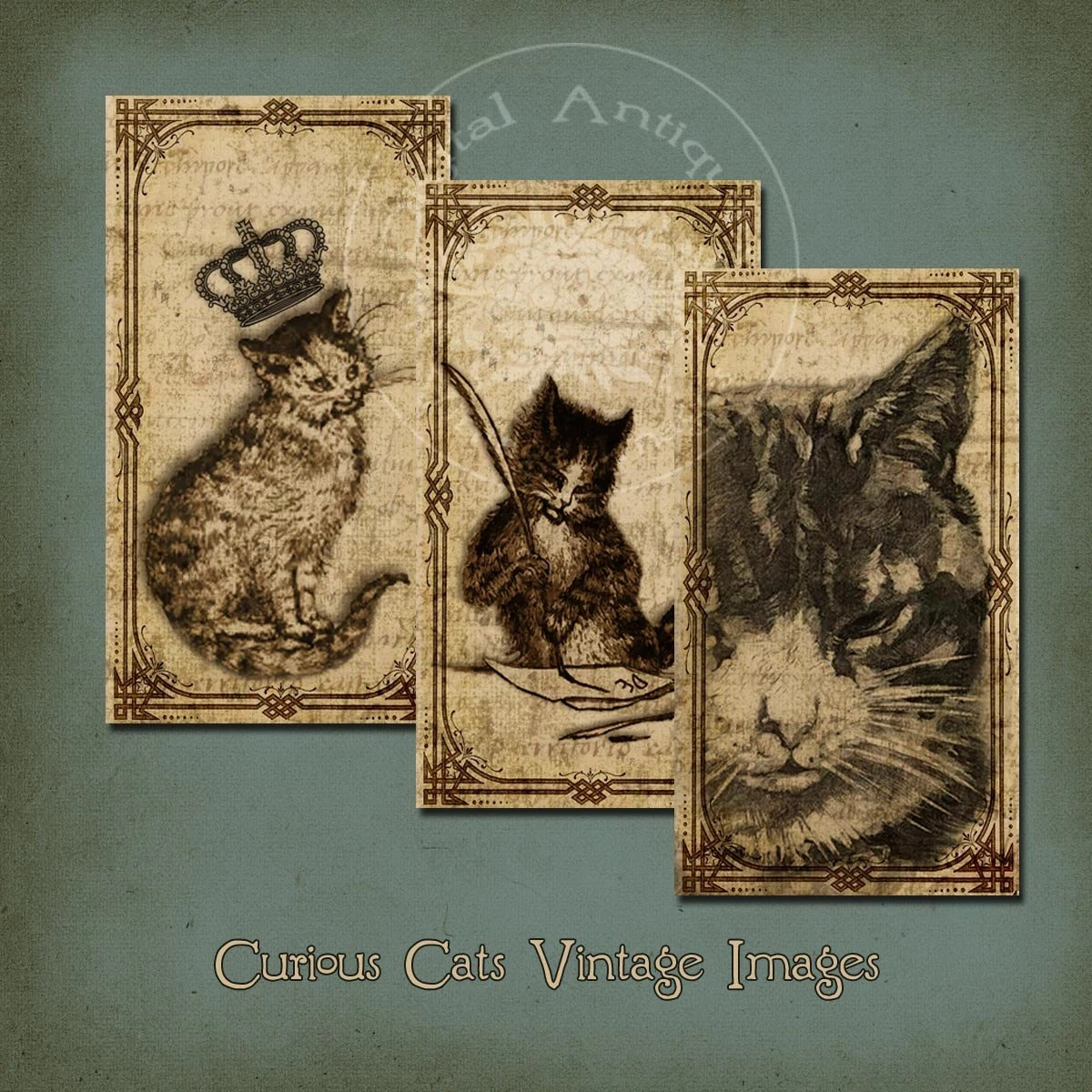Curious Vintage Cats Collage Sheet Sepia Instant