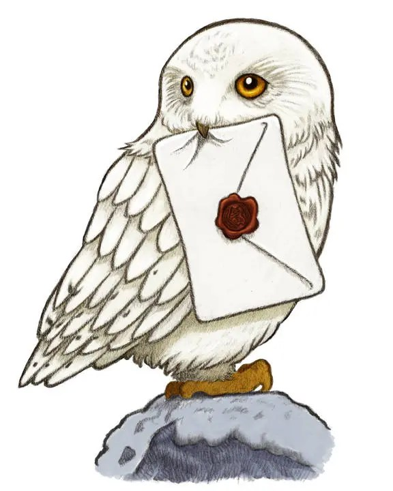 Impression dArt Hedwig Harry Potter Art impression de Harry