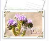 Beautiful Purple Wildflow...